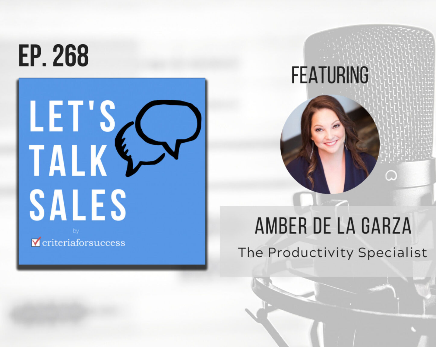 Let's Talk Sales by Criteria for Success 2